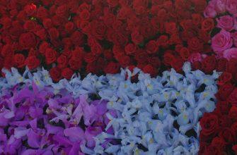 cvety rozy cvetochnyy fon 81298 1280x720 335x220 - Готовность автомобиля к передаче