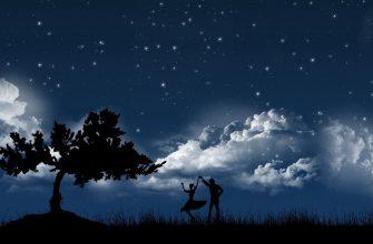 para tanec nebo noch derevo siluety oblaka zvezdy 57095 1280x720 335x220 - Во сне детали автомобиля